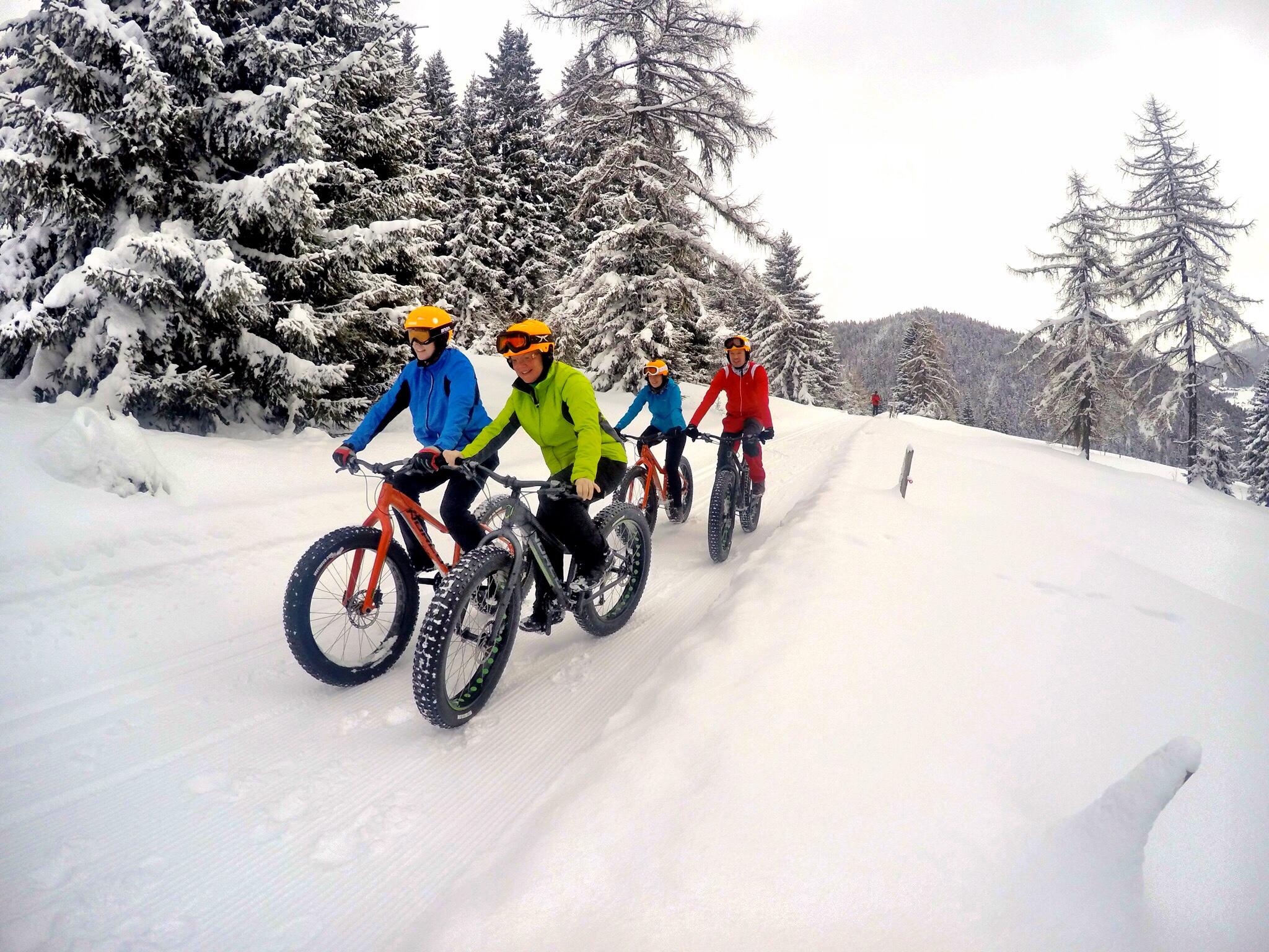 Weitere Winteraktivitäten in Forstau Bild 2